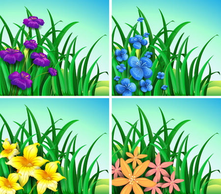 grass flowers: Four scenes of flowers and grass illustration