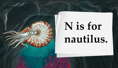 nautilus: Letter N is for nautilus illustration