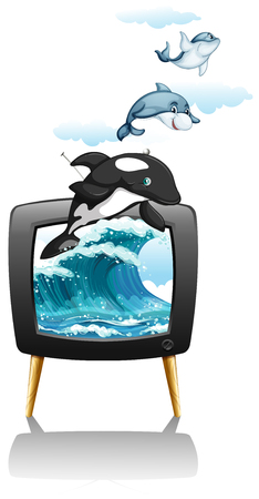 televisions: Dolphines swimming and jumping on TV illustration Illustration
