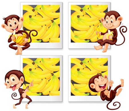art frame: Happy monkeys eating banana  illustration Illustration