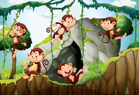 Cinq singes vivant dans l'illustration de la forêt Vecteurs