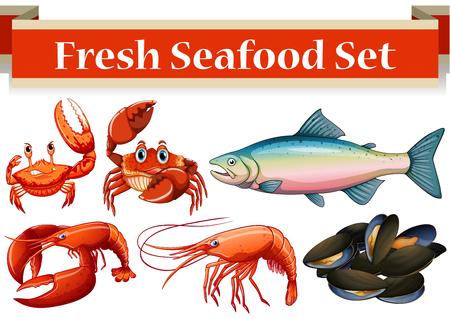 carnivorous fish: Different kind of fresh seafood illustration