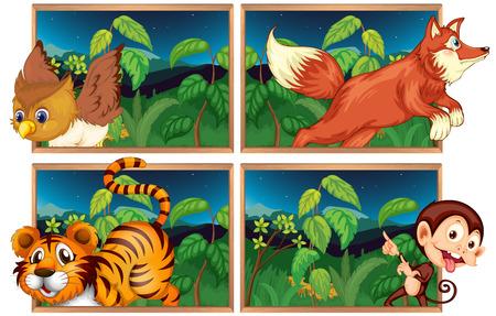 animales silvestres: Cuatro escenas del bosque con la ilustración de animales salvajes