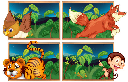 animals in the wild: Four forest scenes with wild animals illustration