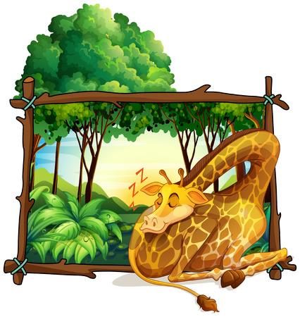 giraffe frame: Wooden frame with giraffe in the jungle illustration