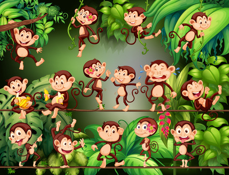 Monkeys doing different things in the jungle illustration. Stock Photo