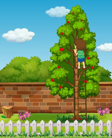 picking fruit: Boy climbing apple tree  illustration