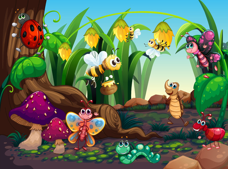 Many insects living in the garden illustration