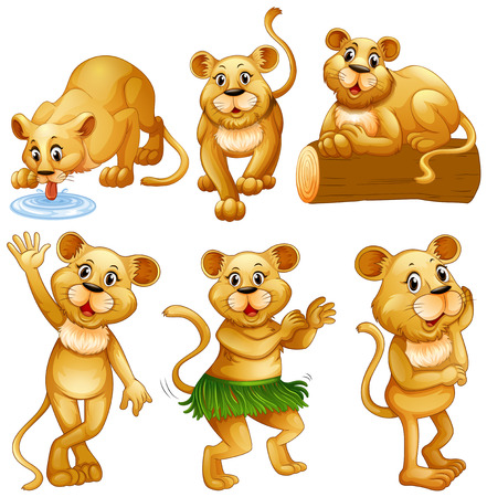 multiple objects: Lion in different activities illustration