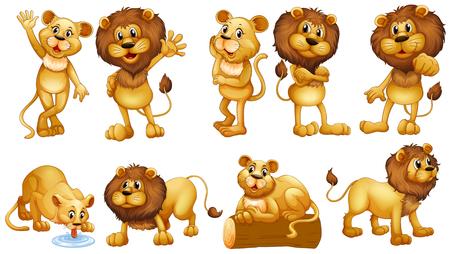 lion dessin: Lions dans différentes actions illustration
