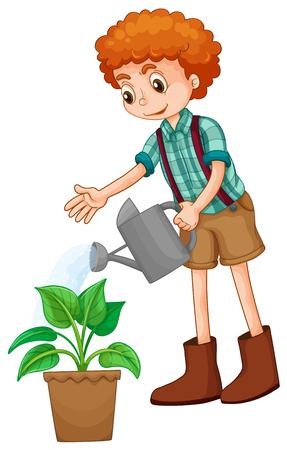 regar las plantas: Muchacho que riega la planta de la ilustración