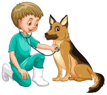 vet: Vet examining dog with stethoscope illustration