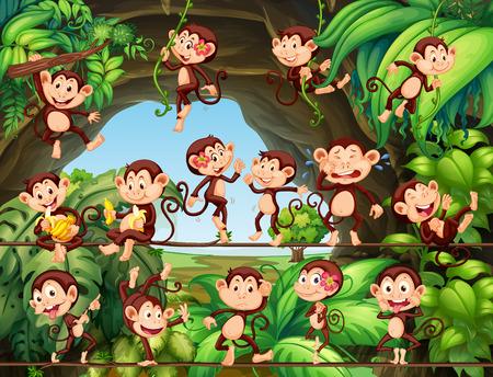 Apen leven in het bos illustratie Vector Illustratie