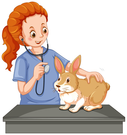 examining: Vet examining little bunny illustration