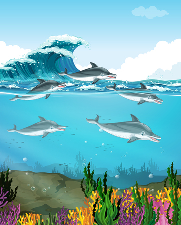 swimming: Dolphins swimming under the sea illustration