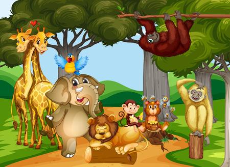 animales del bosque: Los animales salvajes que viven en la ilustración del bosque