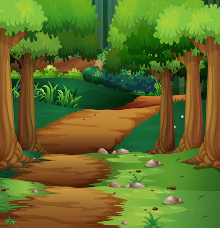 Forest scene with dirt road in the middle illustration Ilustrace