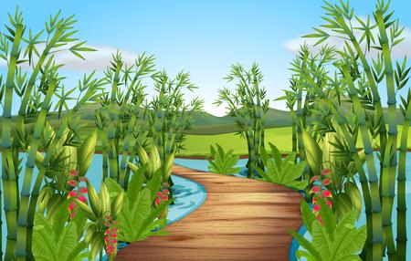 bridge in nature: Nature scene with bamboos along the bridge illustration Illustration