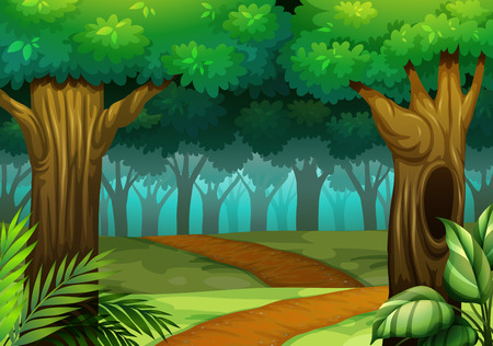 forest clipart: Forest scene with trail in the woods illustration