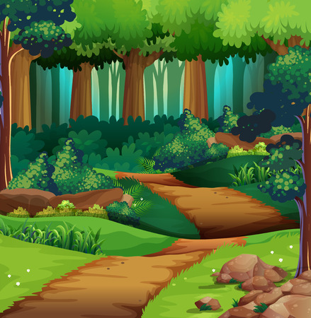 trail: Forest scene with dirt trail illustration