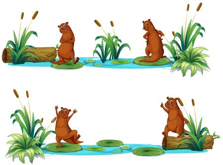 nutria caricatura: Castores que viven en la ilustración estanque