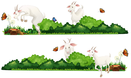 graphic background: White goats in the garden illustration