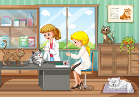 two animals: Two vets healing animals in the hospital illustration Illustration