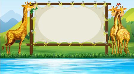 giraffe frame: Frame design with two giraffes illustration Illustration
