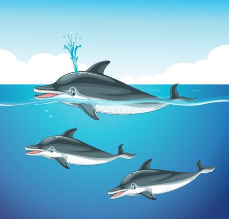 carnivorous fish: Dolphin swimming in the ocean illustration