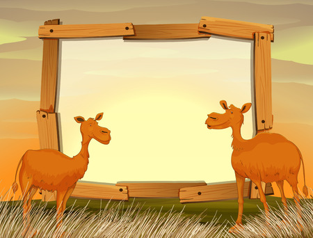 fields  grass: Frame design with camels in the field illustration