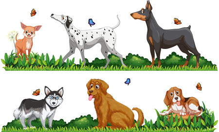 background picture: Many type of dogs in the park illustration