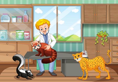 animals in the wild: Vet healing wild animals in the clinic illustration Illustration
