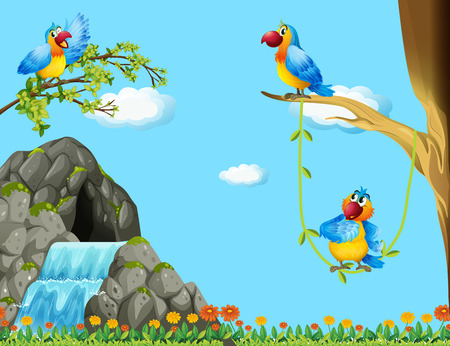 waterfall in forest: Three parrots living by the cave illustration