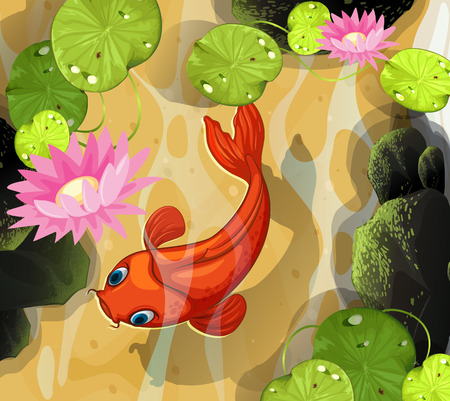 koi fish pond: Koi swimming in the pond illustration