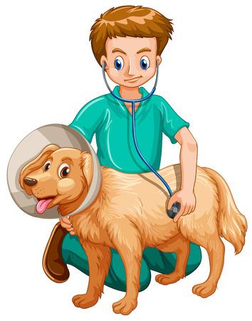 examining: Vet examining pet dog illustration