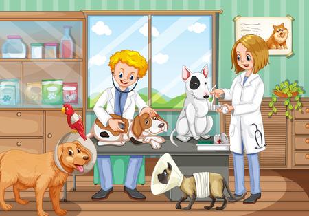 Dwóch weterynarzy pracujących w szpitalu ilustracji zwierząt