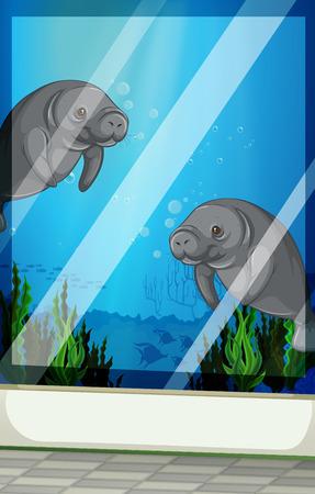 fishtank: Seacows swimming under the sea illustration