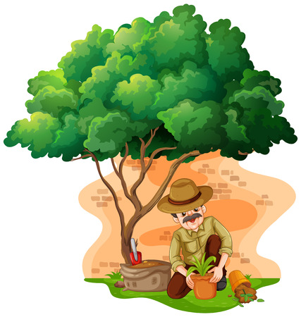 planting: Man planting tree in the garden illustration