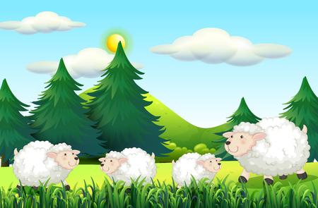 sheeps: Sheeps living on the farmyard illustration Illustration