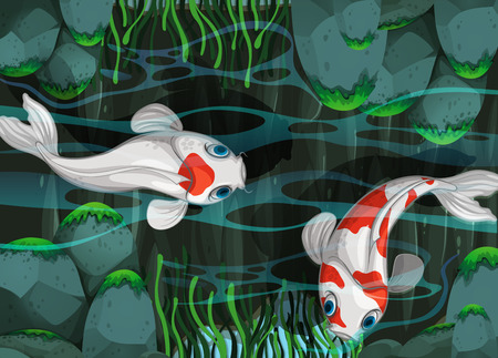 fish illustration: Two fish swimming in the pond illustration