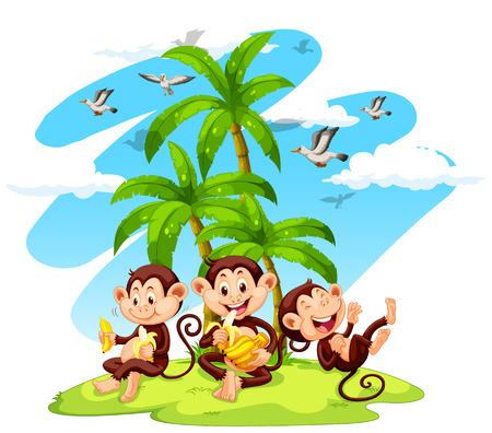 island isolated: Three monkeys eating bananas illustration