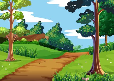 Scena della natura con la foresta e percorso a piedi illustrazione