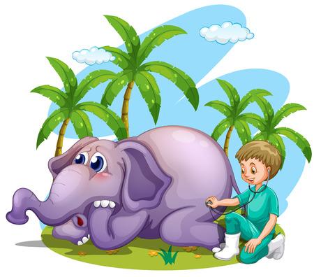 animal doctor: Vet examining elephant in the park illustration Illustration