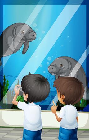 fishtank: Students looking at seacows from fishtank illustration Illustration