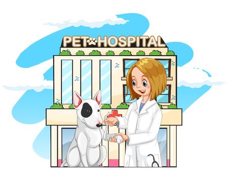 Vet and pet dog at the pet hospital illustration Illustration