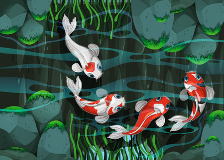 fish pond: Four fish swimming in the pond illustration
