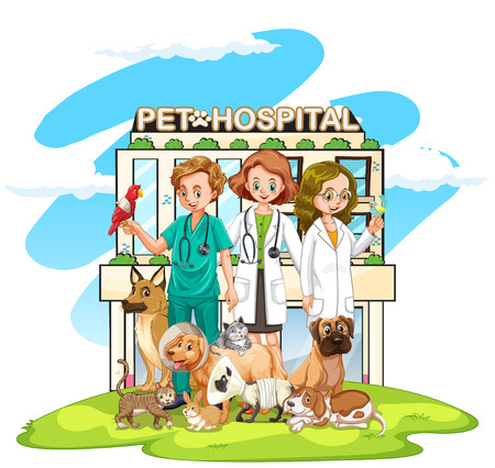 animal doctor: Three vets and many pets at the hospital illustration