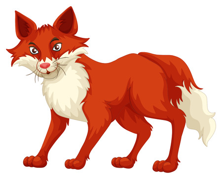 dingo: Fox with red fur standing illustration Illustration