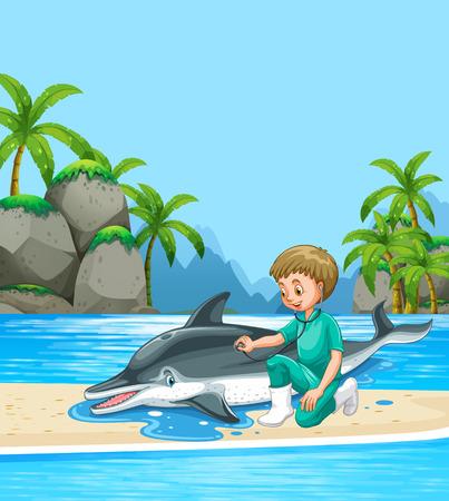 examining: Male vet examining dolpin on the beach illustration Illustration