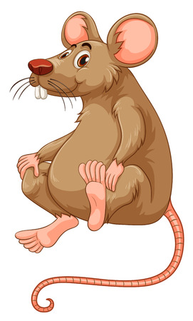 a disease carrier: Little mouse with brown fur illustration Illustration